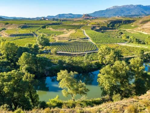Sur la route des vins espagnols
